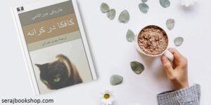 معرفی کتاب کافکا در ساحل